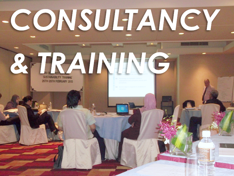 consultancy-training-image